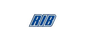 Reparatii motoare Rib